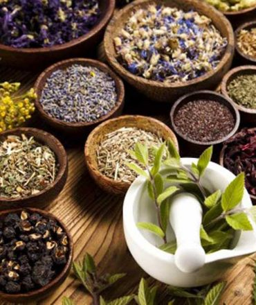 Herbal Academy – Curriculums in Herbal Medicine